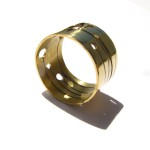 A day, ring plant, brass, 2014
