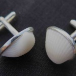 Fragile Jamaica, Ben's Cufflinks, silver and shells from Treasure Beach, 2015