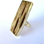 Fragile Jamaica, ring, cactus wood from Treasure Beach and brass, 2015,