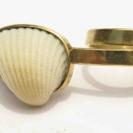 Ring, shell from Treasure Beach and brass, 2016 (Collection Fragile Jamaica /Shell)