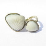 Fragile Jamaica, shells, rings 2 shells small and large, 2015
