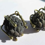 Gilded Cage, earrings sweetsop and bronze, 2014