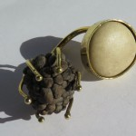 Gilded Cage, ring, galet et sweet sop, bronze and brass, 2014