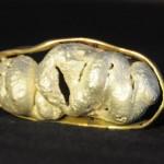 cucubirtacé, argent et bronze, 2010