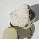 Ring, white coral and brass, 2012