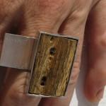 ring, Fragile Jamaica, cactus et feuille de laiton, argent 925, 2013