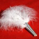 tubes avec plumes, argent, 2009