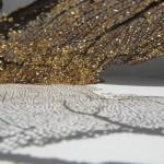 sea lung, coral, coper, brass, june 2012